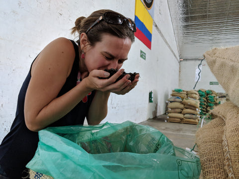 Smelling raw coffee in Colombia