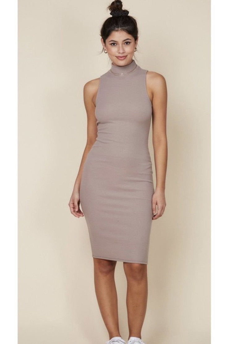 Vee High Neck Tank Dress $38