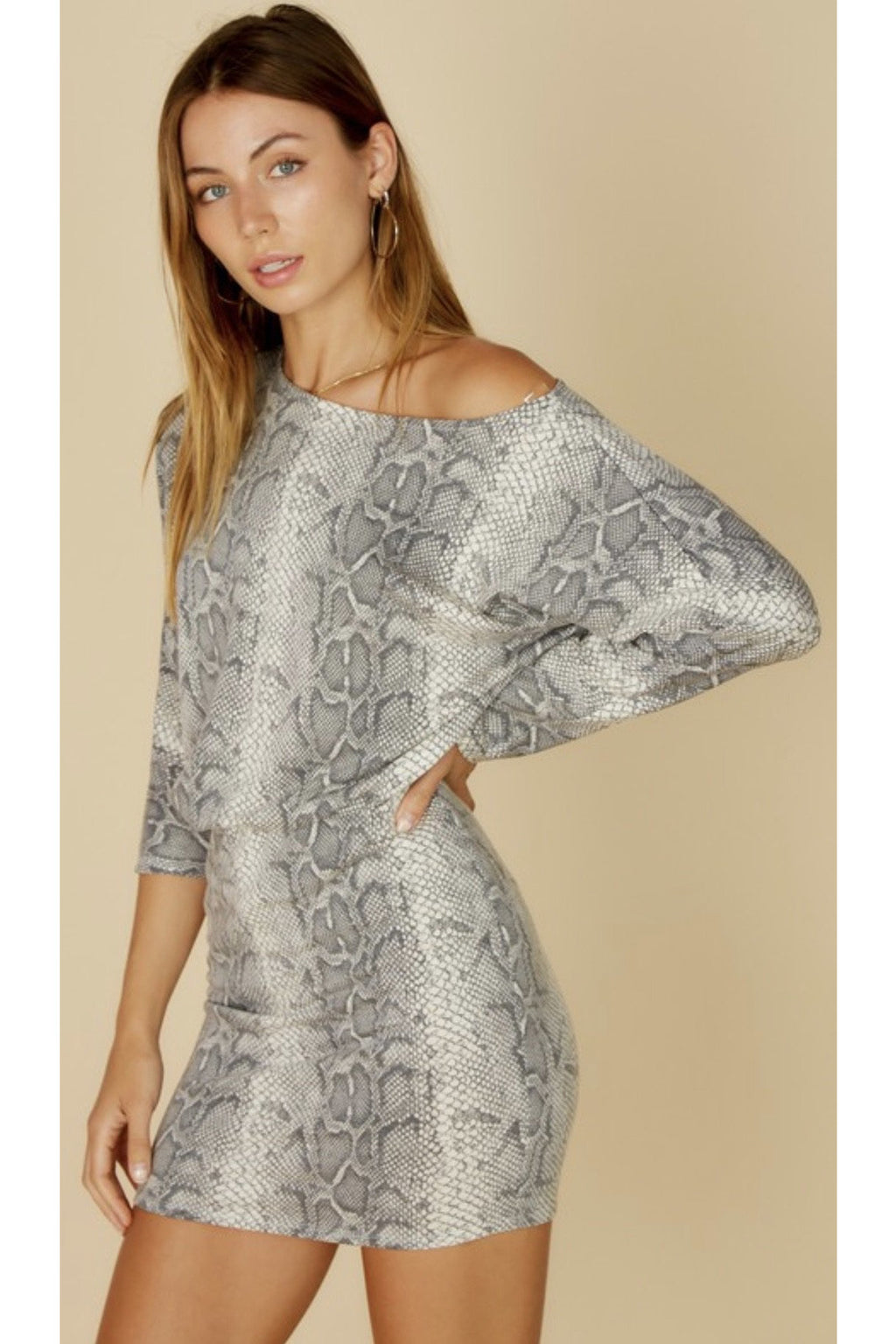 Sis Snake Print Mini Dress