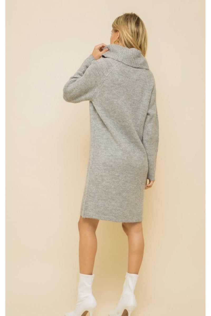 Amaya Turtleneck Sweater Dress