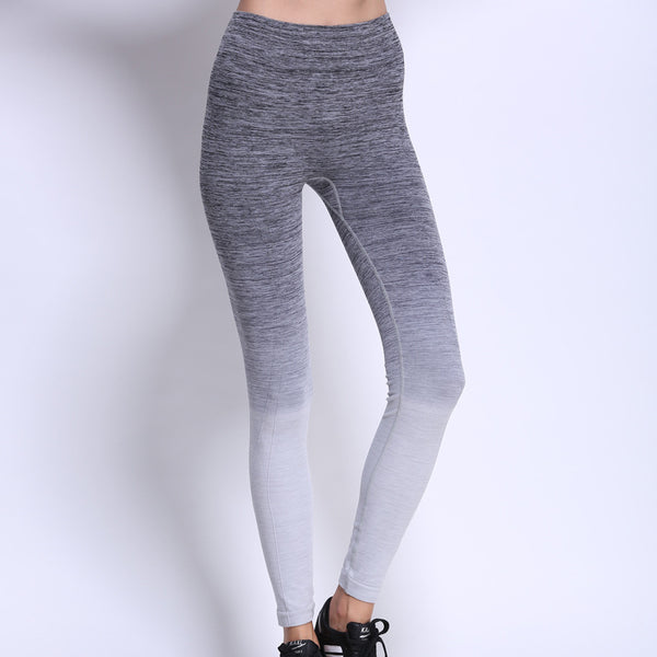 High Waist Tight Stretch Fitness Gradient Legging