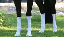Load image into Gallery viewer, Sox for Horses - Sport Pony