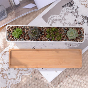 Rectangular Ceramic Plant Pot And Tray