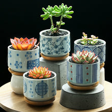 Load image into Gallery viewer, Painted Ceramic Pot With Bamboo Tray