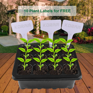 Large Cell Seedling Starter Germination Kit