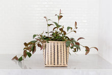 Load image into Gallery viewer, Lipstick Black Pagoda Plant + Basket