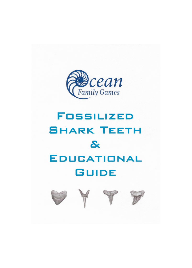 Fossilized Shark Teeth Educational Guide