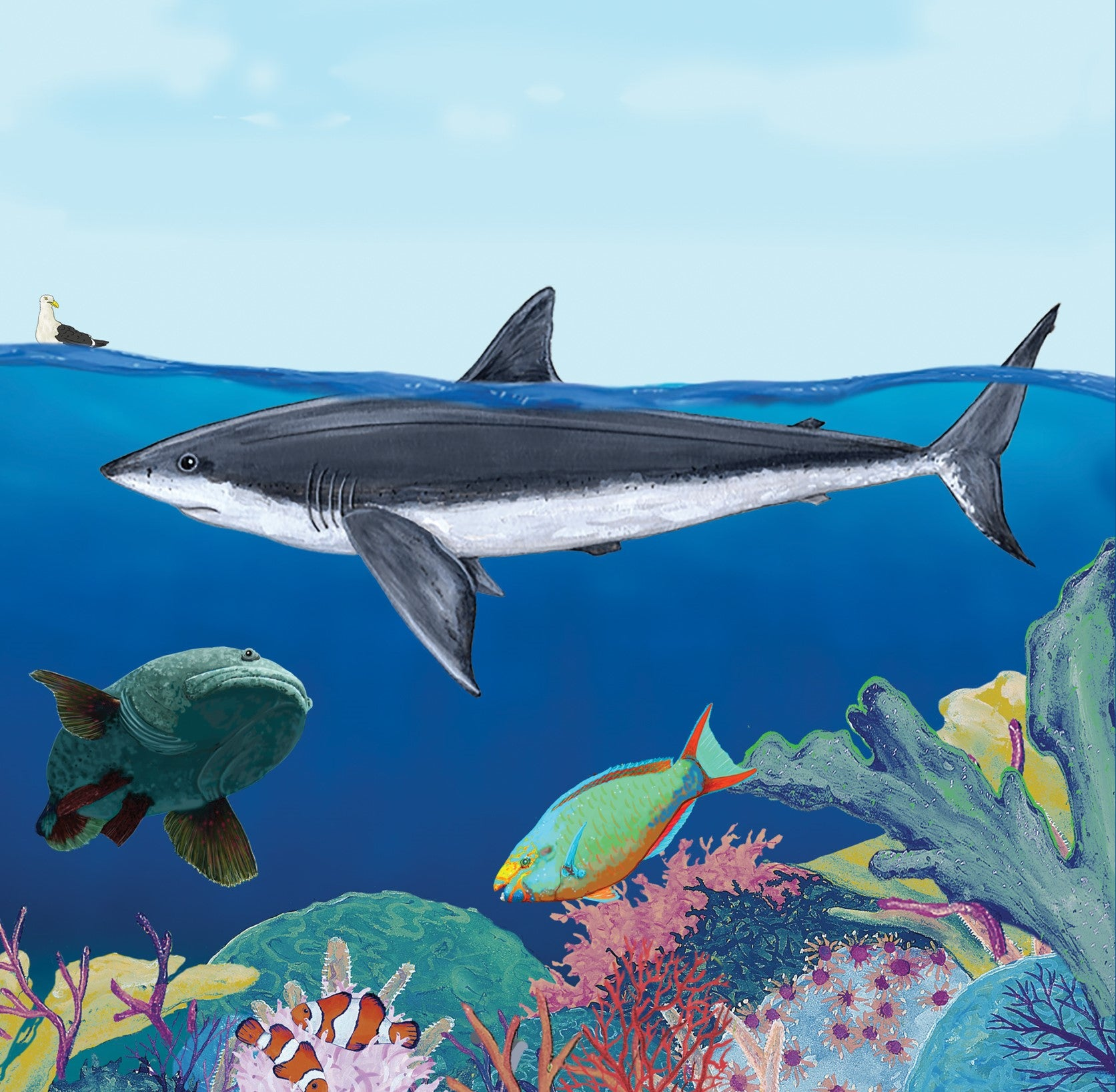 OCEARCH Sharks in the Ocean - Children's Book