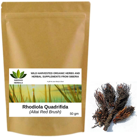 Rhodiola Quadrifida Root, Altai Red Brush Wild Harvested Organic Красная щетка from Altai Mountains, Siberia, Russia.