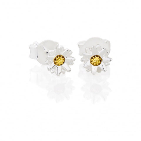 Silver and Gold 5mm Daisy Stud Earrings - Daisy - Monkey Puzzle Jewellery