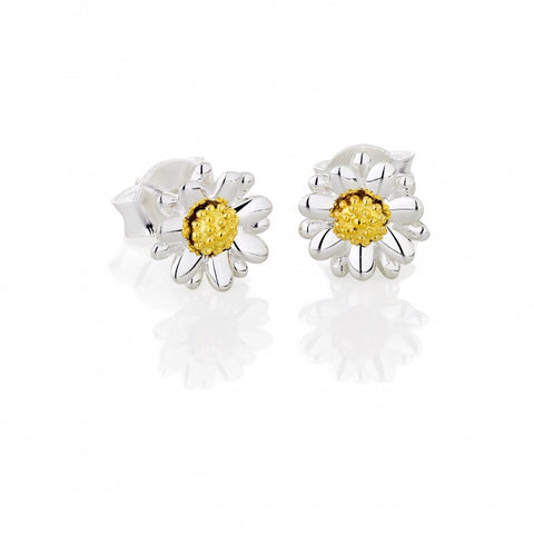 Daisy Earrings, Silver and Gold 7mm Studs - Daisy - Monkey Puzzle Jewellery