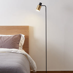 Modern Black and Gold Nordic Floor Lamp