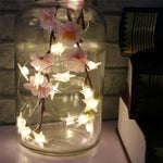 Star Shaped Fairy Lights