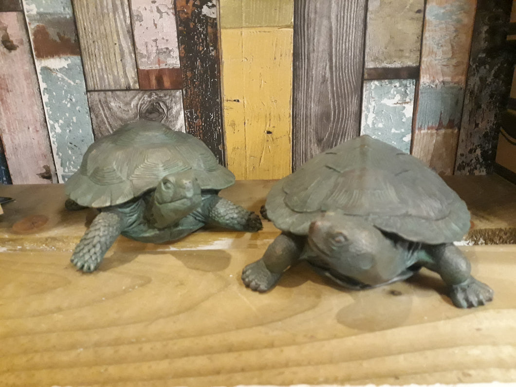 Set of 2 Tortoises
