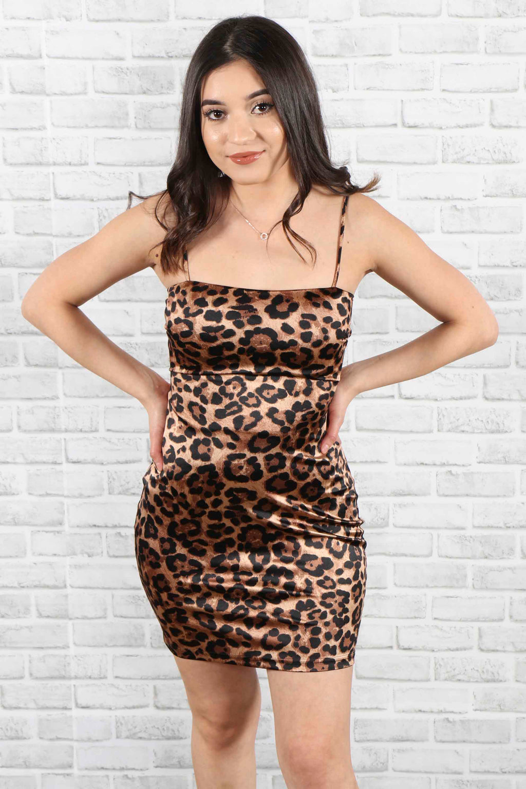 Purrfect Tie Back Dress