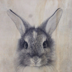 Rabbit Frameless Wood Board