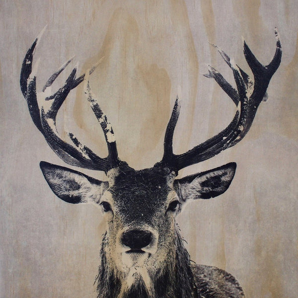 Deer Frameless Wood Board