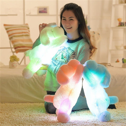 50CM Colorful Luminous Teddy Dog LED Light Plush Pillow
