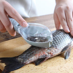 Fish Scale Scraper With A Scales Catcher