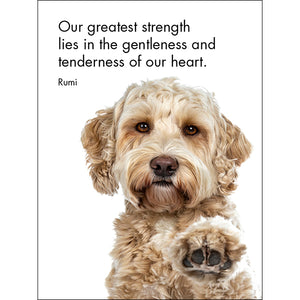 Little Affirmations Good Dogs Gift Card Set