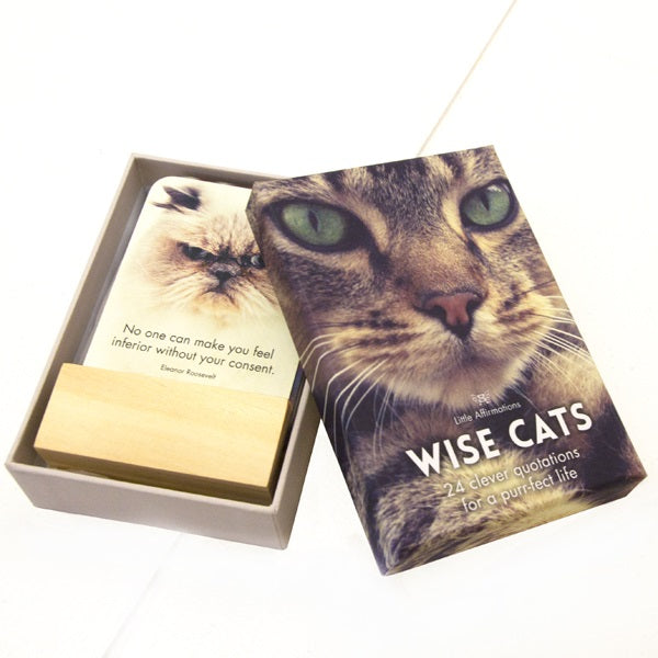 Wise Cats Positive Affirmation Cards