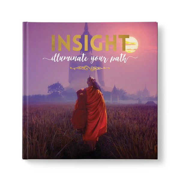 Insight - Illuminate Your Path