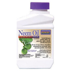 Bonide 024 Concentrate Neem Oil Insect Repellent, 16-Ounce