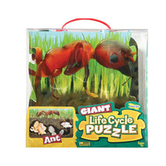 Giant Ant Life Cycle Puzzles