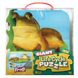 Giant Frog Life Cycle Puzzles