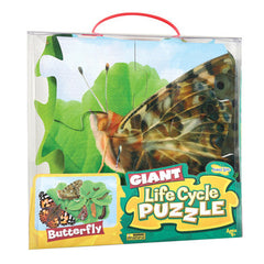 Giant Butterfly Lifecycle Puzzle