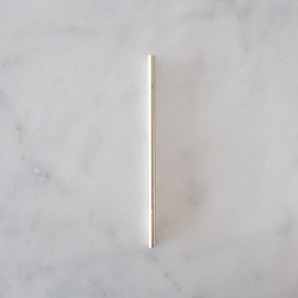 Ever Eco Stainless Steel Straw - Straight - Single