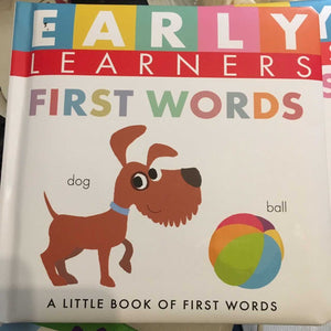 First Words for Early Learners by Little Hippo Books