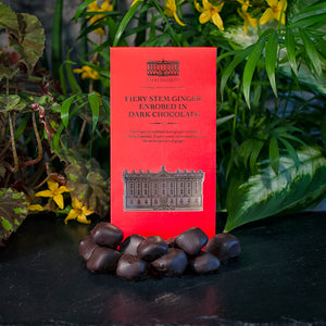Dark chocolate fiery stem ginger