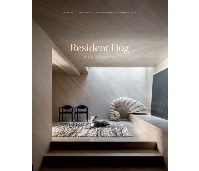 Resident Dog - Volume 2 by Nicole England
