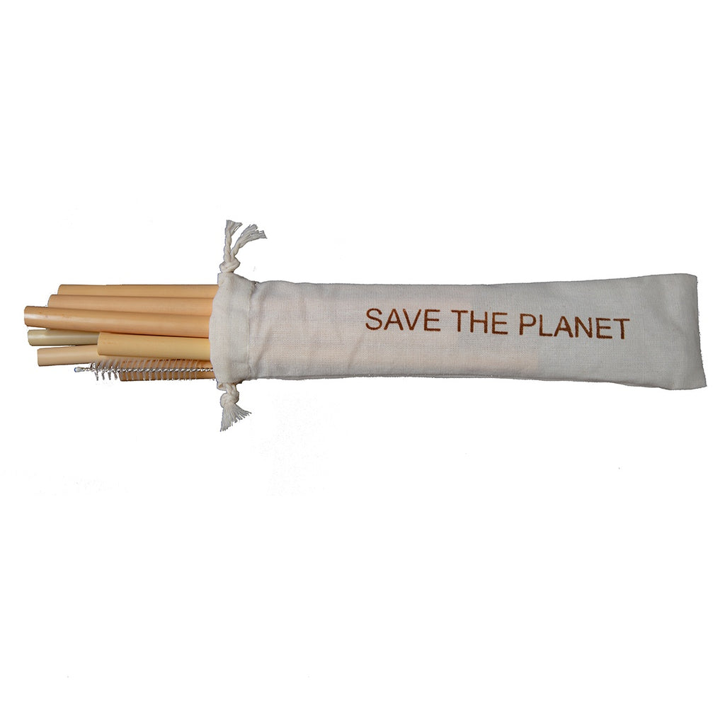 Bamboo Straw 10-Pack