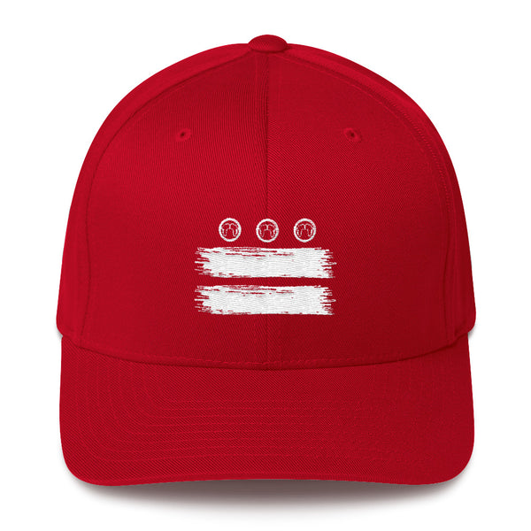 DC Flag Fitted Cap