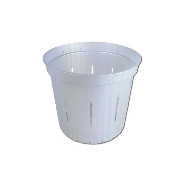 White Pearl Slotted Violet Pot