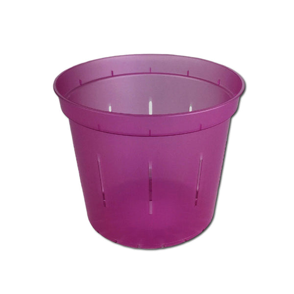 Wild Orchid Slotted Violet Pot