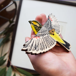 Striated Pardalote - Mobile