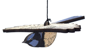 Superb Fairy Wren - Mobile