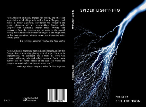 Spider Lightning - Poems by Ben Atkinson