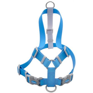 "Coastal Pet Waterproof Dog Harness 1"" Wide - Frenchie and Friends"