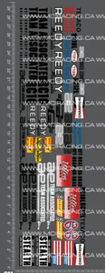 1/10TH ASSOCIATED - RC10 - CHAMPIONSHIP EDITION DECALS - L&L models