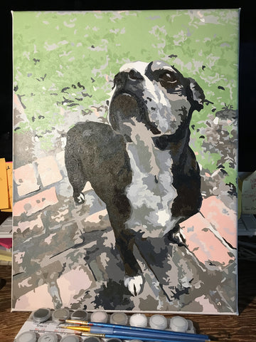 Paint by numbers by MiiCreative of black dog outdoors with paints and brushes