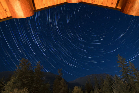 photo time lapse of stars above trees at night