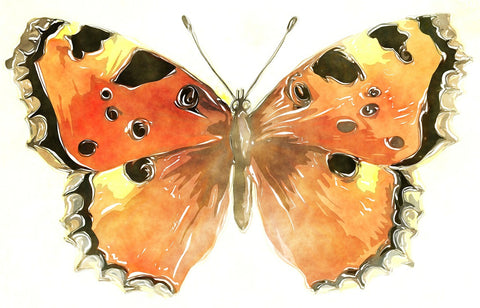 watercolor orange butterfly painting