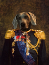 The paint by numbers for royal, noble and amazing pets.