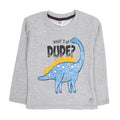 Dinosaur Printed Sweat Shirt For Boys - Grey (SS-11)