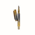 Stylish Fountain Ink Pen With Case - Multi (8055)