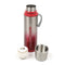 SUS 304 Stainless Steel Water Bottle 500ml- Silver/Pink (BDZ60)